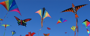 Kites flying pic